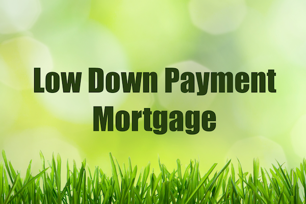 low Down Payment Mortgage Loans